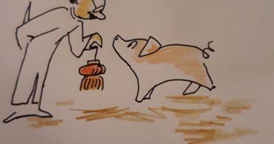 L'année du cochon chinois vue par Marielle